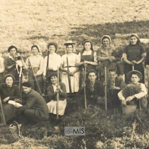 """Recordo das repoboacións de """"pinotea"""" no montes da Picoña."""